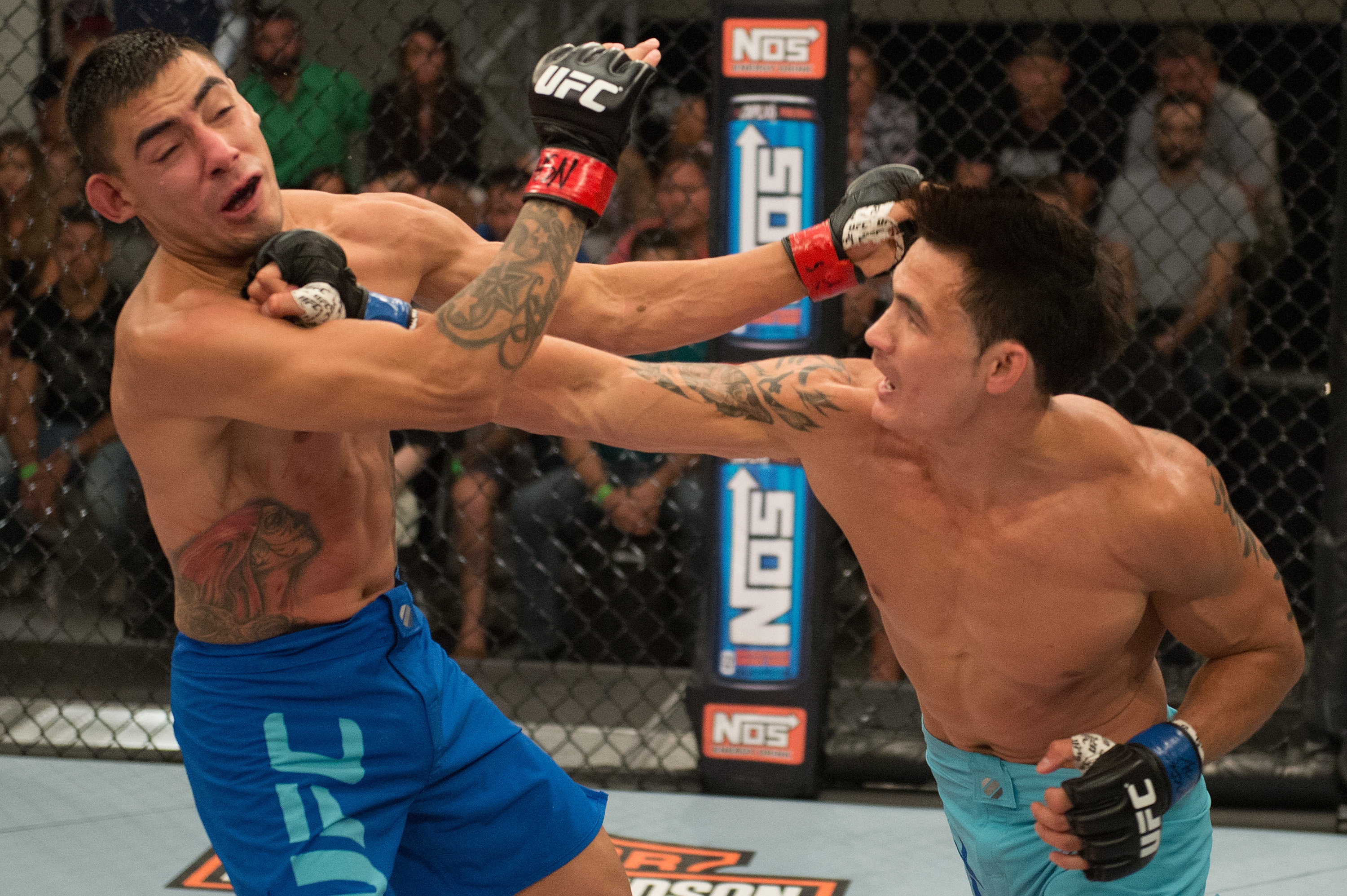 (R-L) Thanh Le punches Andres Quintana during the elimination fights at the UFC TUF Gym on July 17, 2015 in Las Vegas, Nevada. (Photo by Brandon Magnus/Zuffa LLC)