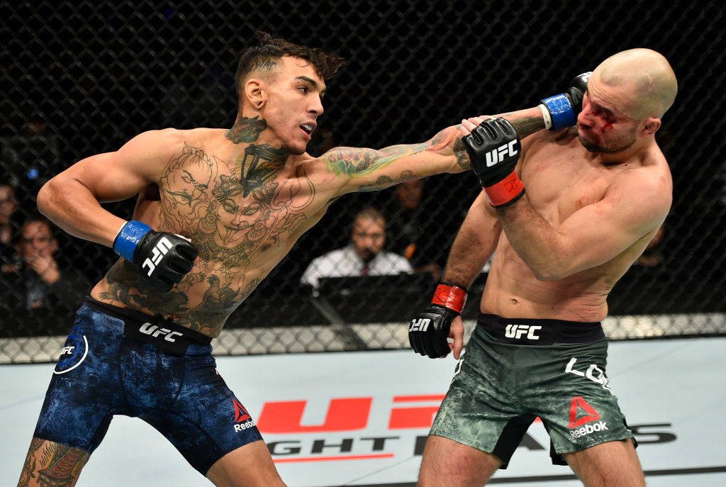 GDANSK, POLAND - OCTOBER 21: (L-R) Andre Fili punches Artem Lobov of Russia in their featherweight bout during the UFC Fight Night event inside Ergo Arena on October 21, 2017 in Gdansk, Poland. (Photo by Jeff Bottari/Zuffa LLC)