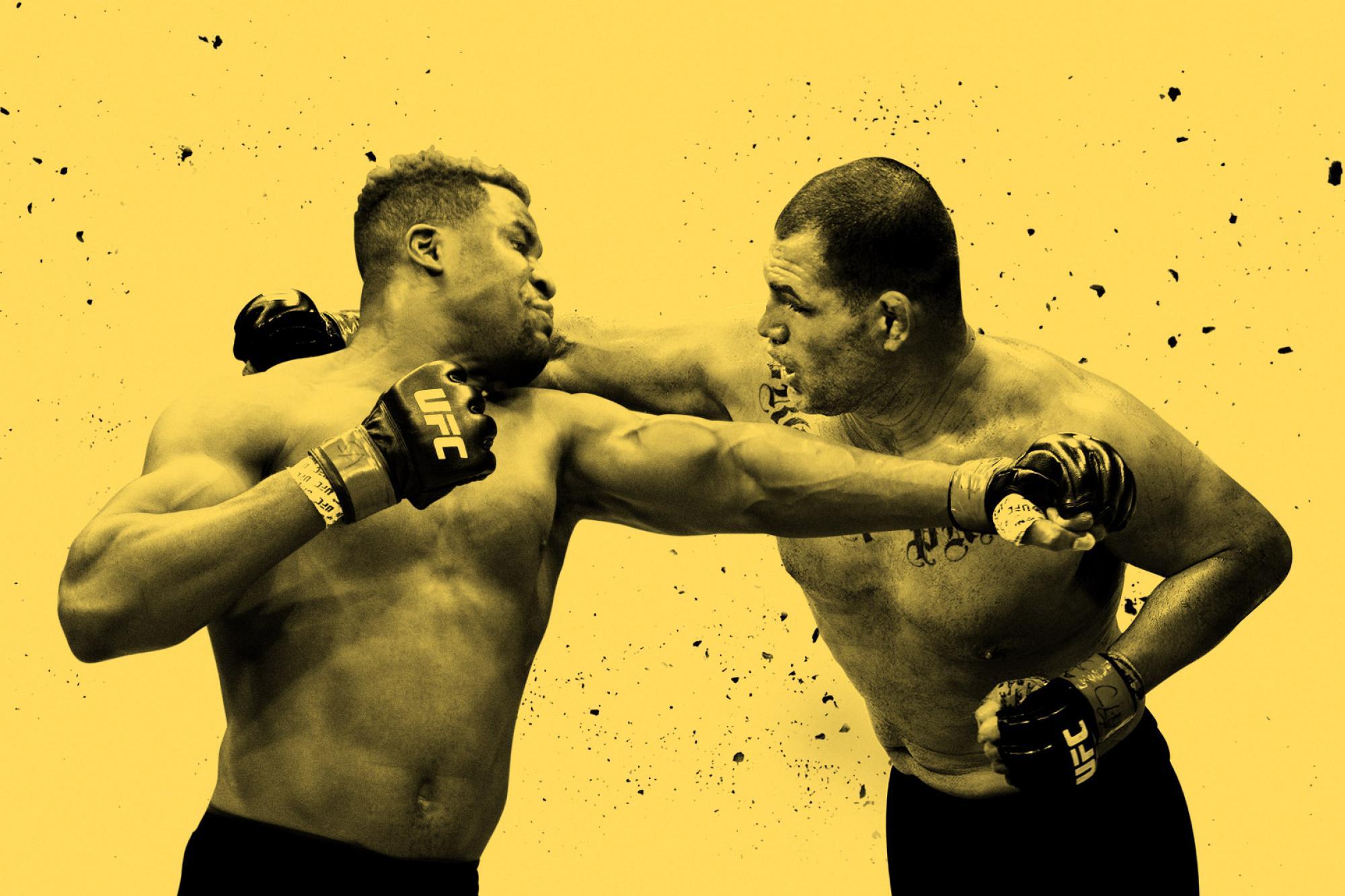 Ufc fight night ufc