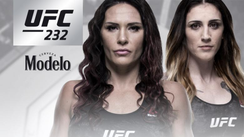 UFC 232 Zingano vs Anderson