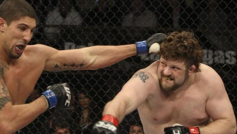 The Ultimate Fighter Finale Roy Nelson vs Brendan Schaub