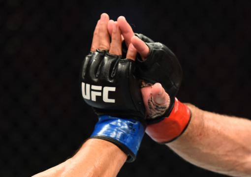 UFC Glove Touch