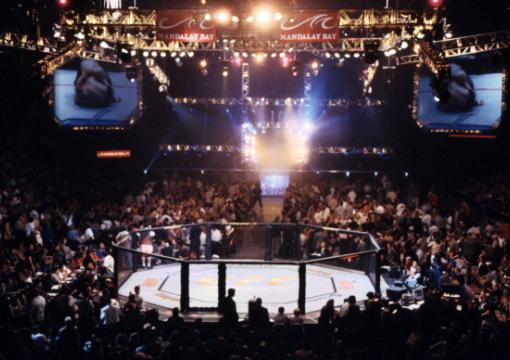UFC 33 Victory in Vegas