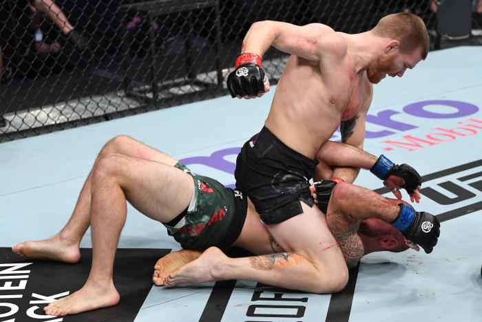 NEW YORK, NY - NOVEMBER 03:  Matt Frevola (top) punches Lando Vannata in their lightweight bout during the UFC 230 event inside Madison Square Garden on November 3, 2018 in New York, New York. (Photo by Jeff Bottari/Zuffa LLC via Getty Images)