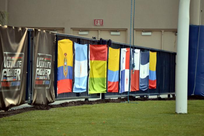 Las banderas de Latinoamérica también presentes para apoyar al Team Werdum