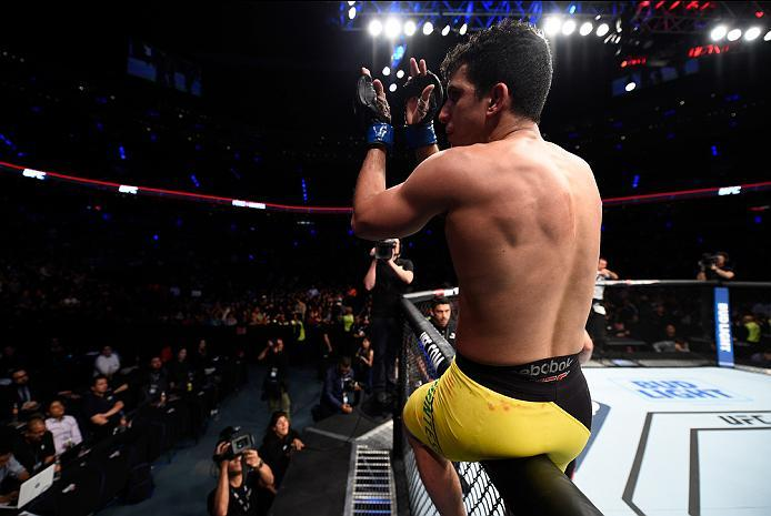 MEXICO CITY, MEXICO - NOVEMBER 05:  Felipe Arantes of Brazil jumps onto the cage after facing Erik Perez of Mexico in their bantamweight bout during the UFC Fight Night event at Arena Ciudad de Mexico on November 5, 2016 in Mexico City, Mexico. (Photo by
