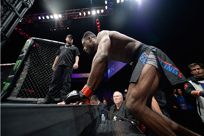 LAS VEGAS, NEVADA - DECEMBER 10:  Aljamain Sterling enters the Octagon before his fight against Johnny Eduardo in their bantamweight bout during the UFC Fight Night event at The Chelsea at the Cosmopolitan of Las Vegas on December 10, 2015 in Las Vegas, N