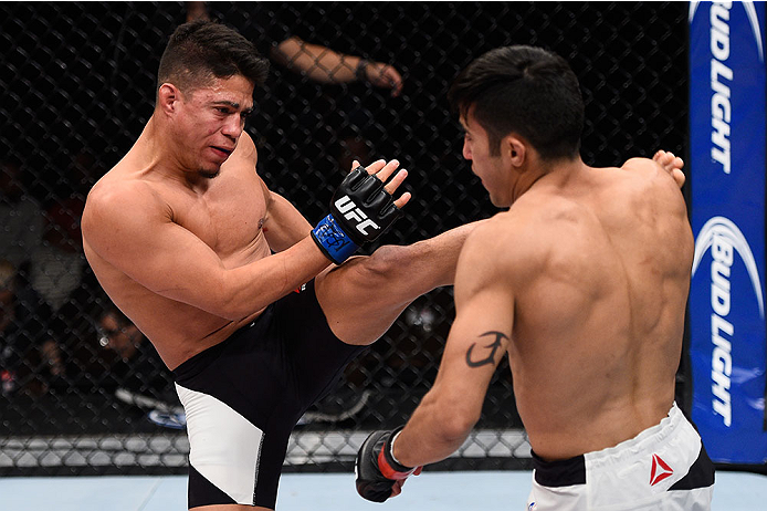 LAS VEGAS, NV - DECEMBER 11: (L-R) Geane Herrera kicks Joby Sanchez in their flyweight bout during the TUF Finale event inside The Chelsea at The Cosmopolitan of Las Vegas on December 11, 2015 in Las Vegas, Nevada.  (Photo by Jeff Bottari/Zuffa LLC/Zuffa