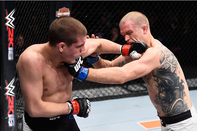 LAS VEGAS, NV - DECEMBER 11: (L-R) Joe Lauzon punches Evan Dunham in their lightweight bout during the TUF Finale event inside The Chelsea at The Cosmopolitan of Las Vegas on December 11, 2015 in Las Vegas, Nevada.  (Photo by Jeff Bottari/Zuffa LLC/Zuffa