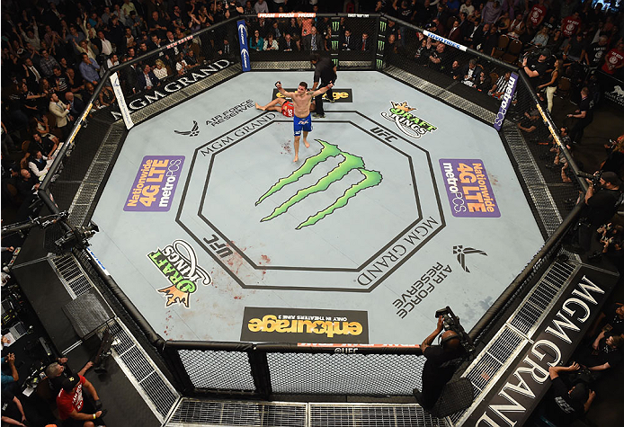 LAS VEGAS, NV - MAY 23:  Chris Weidman reacts to his victory over Vitor Belfort of Brazil in their UFC middleweight championship bout during the UFC 187 event at the MGM Grand Garden Arena on May 23, 2015 in Las Vegas, Nevada.  (Photo by Josh Hedges/Zuffa