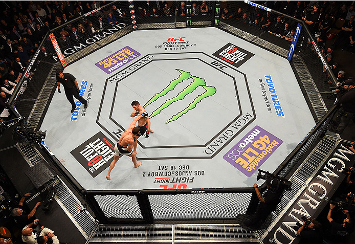 LAS VEGAS, NV - DECEMBER 12: An overhead view of the Octagon as Luke Rockhold punches Chris Weidman during the UFC 194 event inside MGM Grand Garden Arena on December 12, 2015 in Las Vegas, Nevada.  (Photo by Zuffa LLC/Zuffa LLC via Getty Images) *** Loca