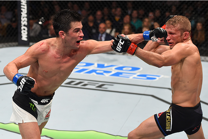 BOSTON, MA - JANUARY 17:  (L-R) Dominick Cruz punches TJ Dillashaw in their UFC bantamweight championship bout during the UFC Fight Night event inside TD Garden on January 17, 2016 in Boston, Massachusetts. (Photo by Jeff Bottari/Zuffa LLC/Zuffa LLC via G