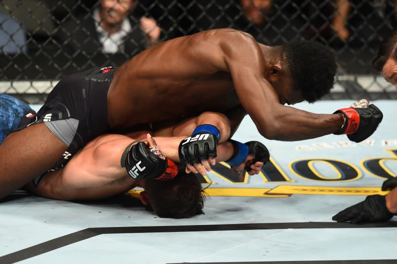 DALLAS, TX - SEPTEMBER 08: Aljamain Sterling (top) punches Cody Stamann in their bantamweight fight during the UFC 228 event at American Airlines Center on September 8, 2018 in Dallas, Texas. (Photo by Josh Hedges/Zuffa LLC/Zuffa LLC via Getty Images)