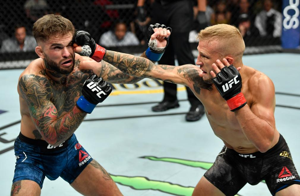 LOS ANGELES, CA - AUGUST 04: (R-L) TJ Dillashaw punches Cody Garbrandt in their UFC bantamweight championship fight during the UFC 227 event inside Staples Center on August 4, 2018 in Los Angeles, California. (Photo by Jeff Bottari/Zuffa LLC/Zuffa LLC via Getty Images)